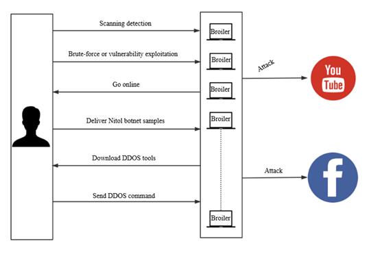 Nitol Botnet Analysis Report